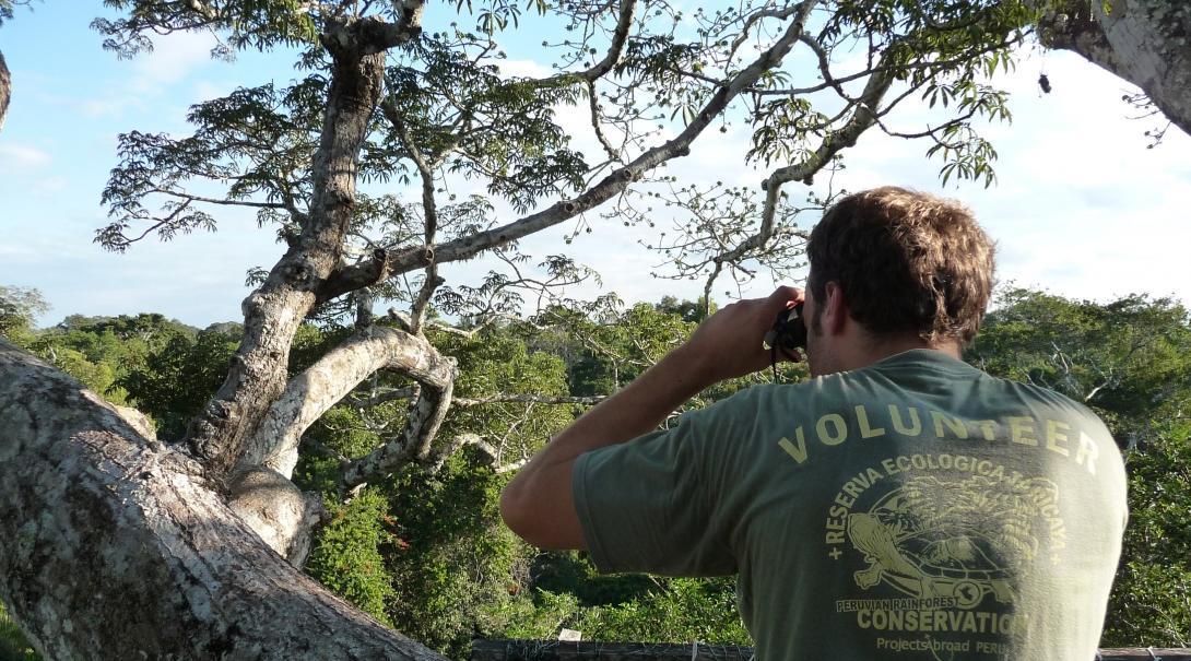 Como parte de su voluntariado de conservación, voluntario observa aves en la Selva Amazónica en Perú.